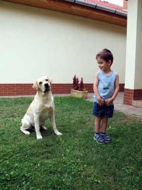 muci.kutyaval.2